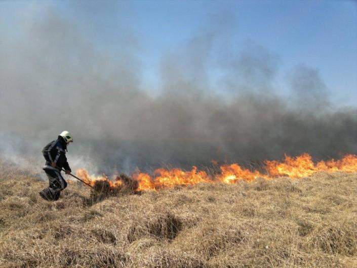 Firetexx Natuurbranden